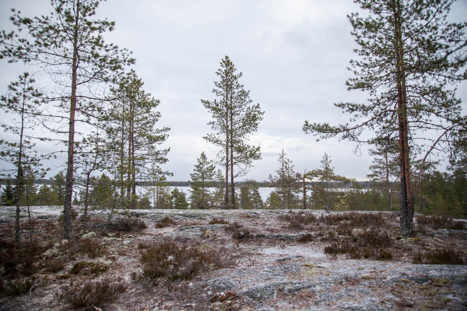 näkötorni kyrkösjärvi seinäjoki