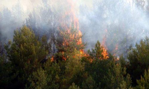 Ισχυρές δυνάμεις από τις Πυροσβεστικές Υπηρεσίες της Ηπείρου έχουν μετακινηθεί σε άλλες περιοχές της χώρας και συνδράμουν στην κατάσβεση πυρκαγιών.