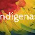 Auxílio emergencial: TRF1 determina atendimento exclusivo a indígenas de São Gabriel da Cachoeira (AM)