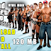 Download GTA San Andreas WWE Fighting With All Skins Mod Pack