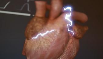 Jantung mempunyai sistem listrik sendiri