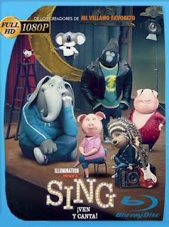 Sing: ¡Ven y canta (2016) HD [1080p] Latino [GoogleDrive] chapelHD