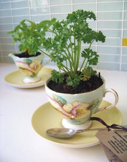 Homemade Planters With Recycled Objects 5