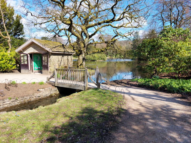 A small wooden hut and bridge over the stream leading from the lake at Lyme