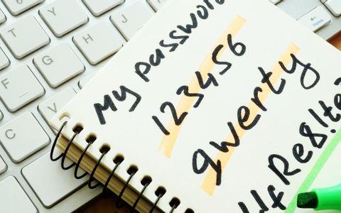passwords written in a diary