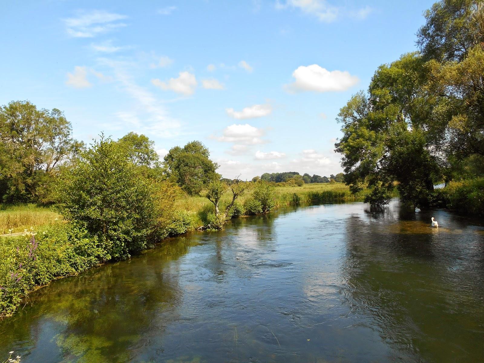 Nature Notes And Observations River Test And Broadlands Estate