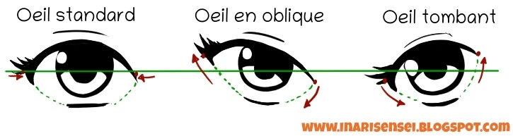 différences entre les yeux standards, obliques et tombants