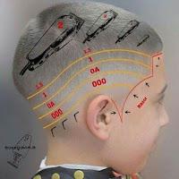 Medidas de cortes para barberos