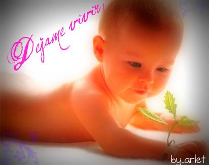 Resultado de imagen para bebés no al aborto