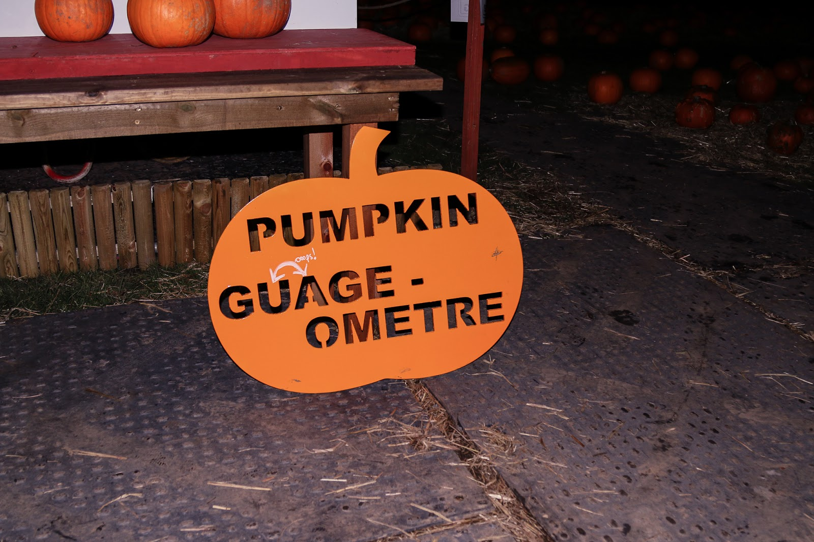 close up photo of the pumpkin gauge that is in the shape of a pumpkin, orange in colour.