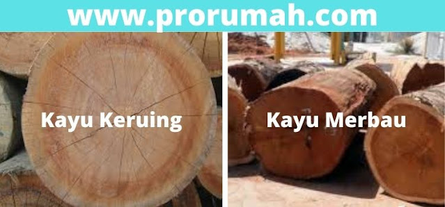 perbandingan kayu keruing dan merbau