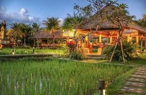 Bebek Sungai Khas Kampung Wisata Ubud, Mantul Banget Rasanya!