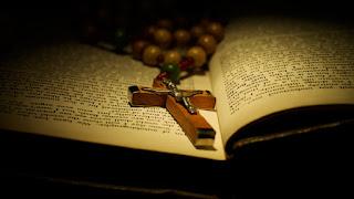 Catholic Daily Reading: 25 November 2020