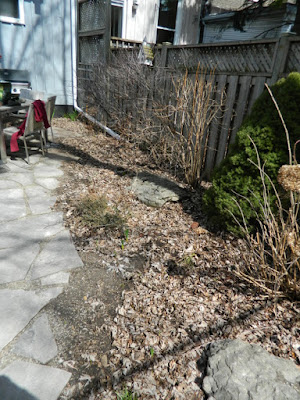 Toronto Leslieville Spring Back Yard Cleanup Before by Paul Jung Gardening Services--a Toronto Gardening Company