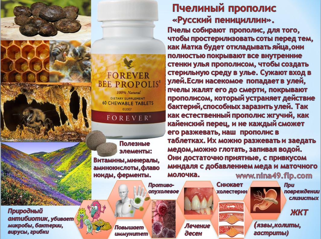Эффективное лечение простатита алоэ с медом