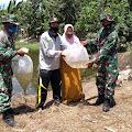 Personel TNI Kodim 0616/Indramayu Bersama Pemdes Rajaiyang Tanam 10 Ribu Benih Ikan Nila
