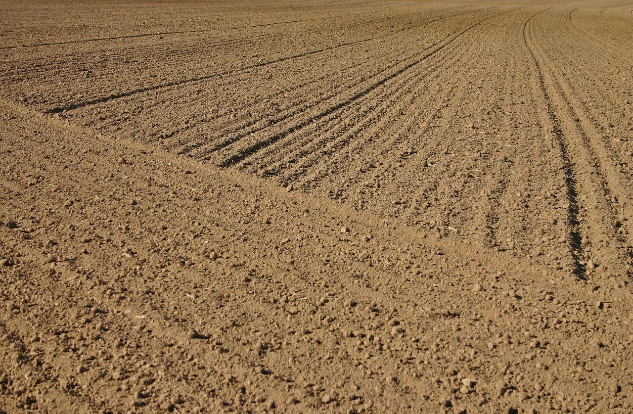 Ini Dia Tahapan Pecah Sertifikat Tanah
