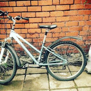 Stolen Bicycle - Raleigh Mountain Bike
