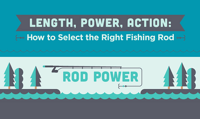 Length, Power, and Action: How to Select the Right Fishing ...