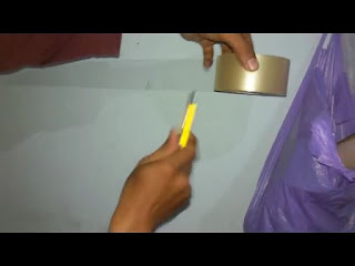 Cara Membuat Perangkap Cicak Sederhana Namun Efektif