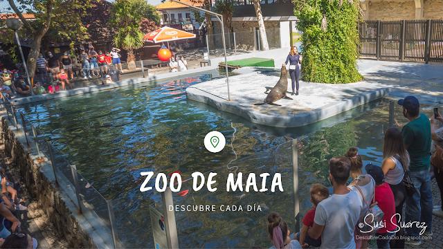 Zoo de Maia - Descubre Cada Día