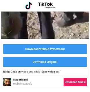 شرح تحميل الفيديو من TikTok بدون علامة مائية