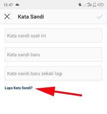 cara mengetahui email instagram kita sendiri