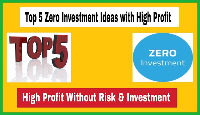 Top 5 Zero Investment Ideas with High Profit