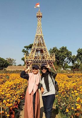 Taman Bunga Matahari Jawa Timur