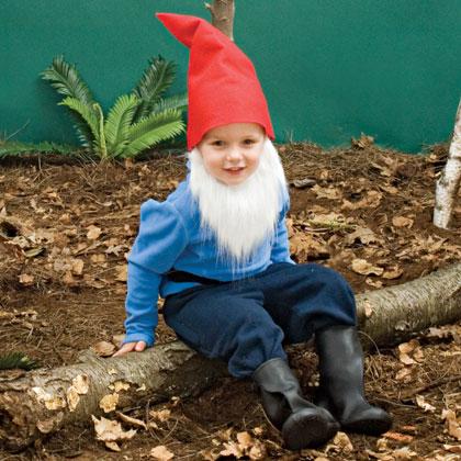 Little Bearded Gnome