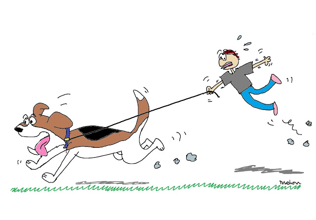 cartoon dog on leash drags human up into air