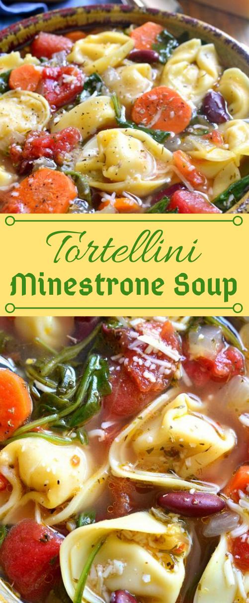 TORTELLINI MINESTRONE SOUP #soup #tortellini #noodle #shrimp #healthydinner