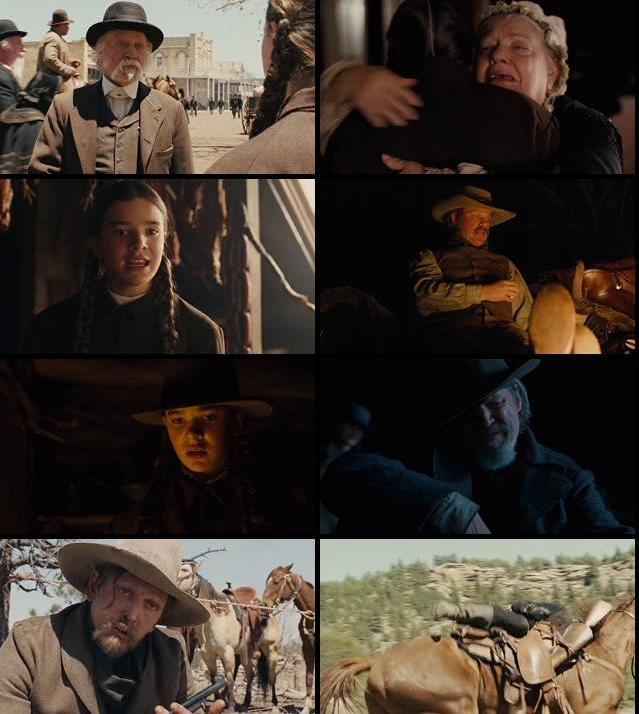 True Grit 2010 Dual Audio Hindi 480p BluRay