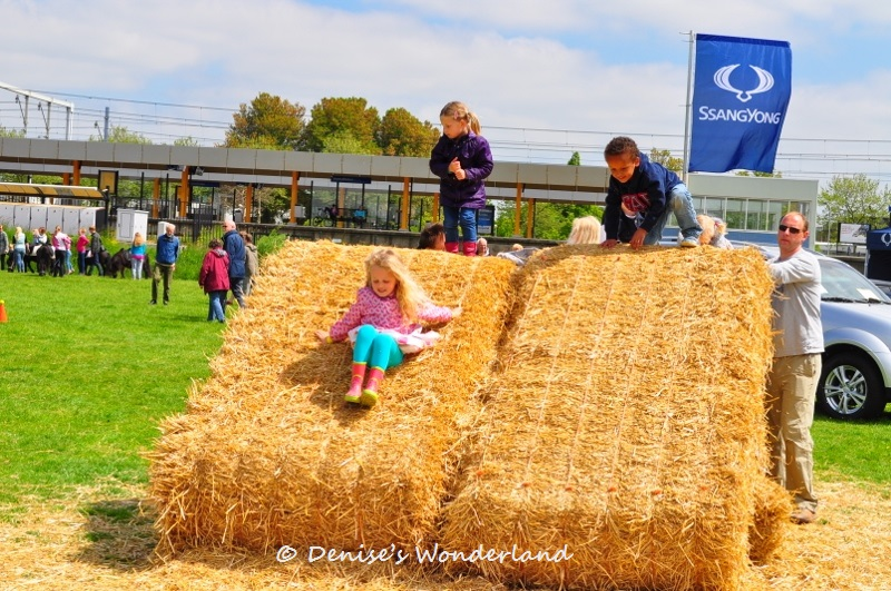 Voorschotense Farm Fair 2013