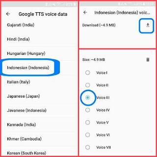 Instal bahasa voice data TTS