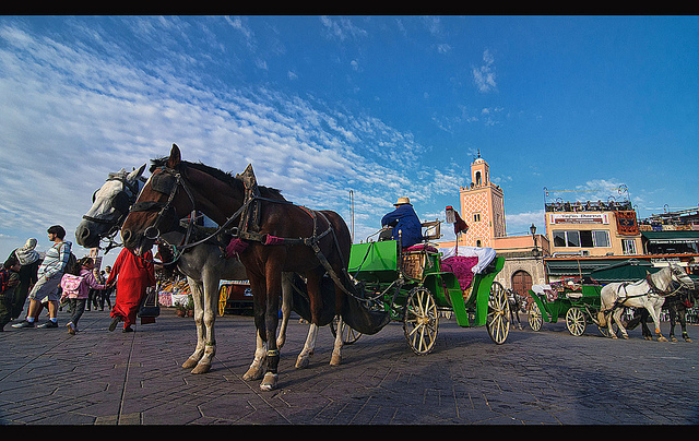 10 bonnes choses à faire à Marrakech, Votre guide touristique du Maroc