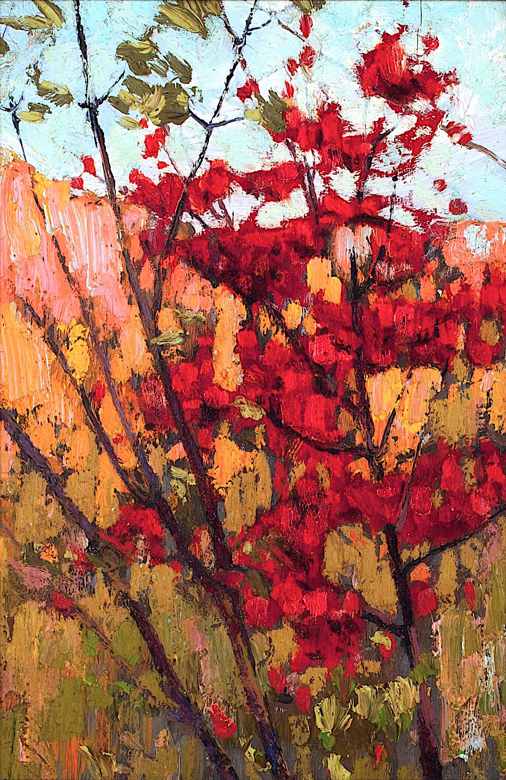 a Tom Thompson painting of a red bush