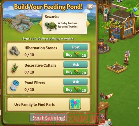 Feeding Pond