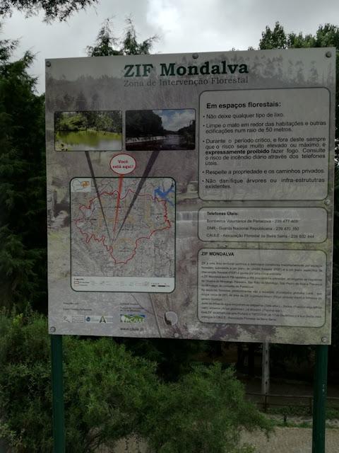ZIF Mondalva