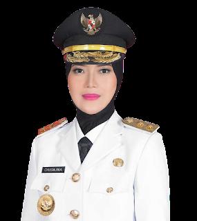 Gubernur dan Wakil Gubernur Lampung PNG