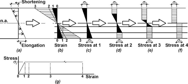 FIGURE 8 Elongation, strain, and stress diagrams for an elastic-plastic material such as steel showing (a) elongation and shortening of the actual material, (b) strain diagrams, (c) stress diagram at the point where the outer fi ber has just yielded, (d) stress diagram corresponding to strain just beyond the elastic limit, (e) stress diagram corresponding to continued strain beyond the elastic limit, (f) stress diagram corresponding to the plastic moment (where the entire cross section has yielded), and (g) stress-strain diagram