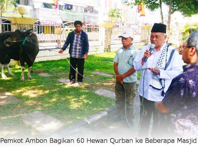 Pemkot Ambon Bagikan 60 Hewan Qurban ke Beberapa Masjid