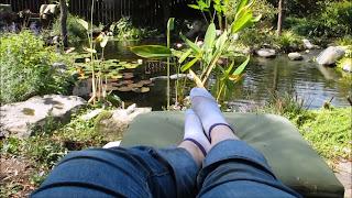 pond relax water garden