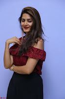 Pavani Gangireddy in Cute Black Skirt Maroon Top at 9 Movie Teaser Launch 5th May 2017  Exclusive 082.JPG