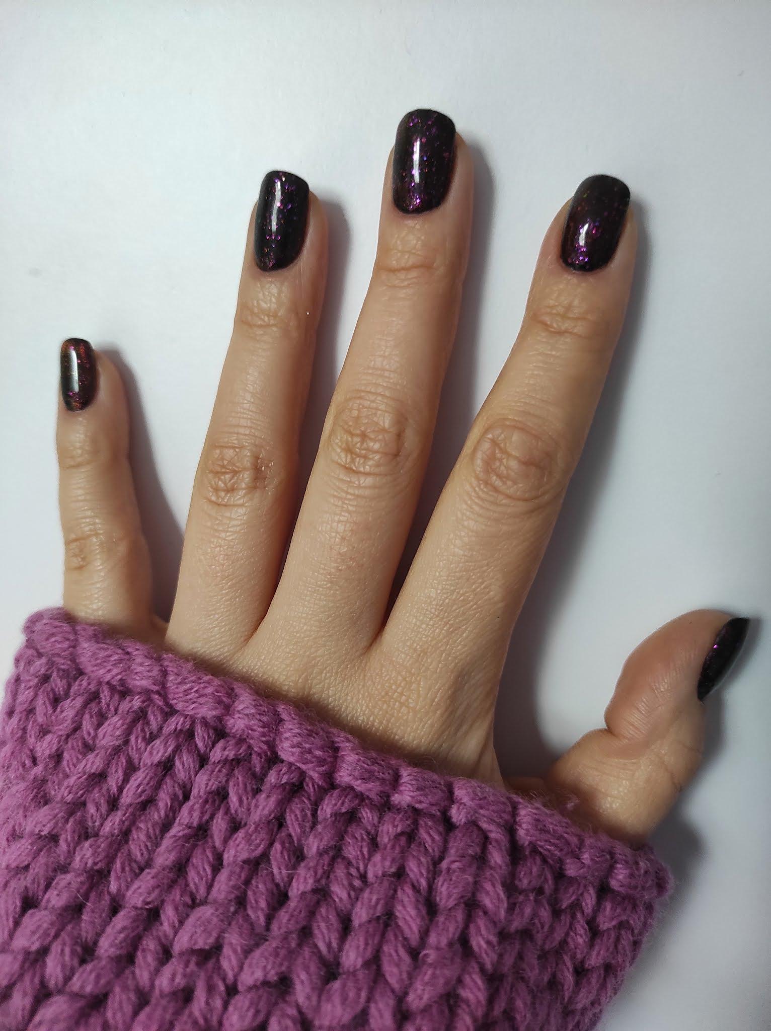 Iguana Magnetique NC Nails Company
