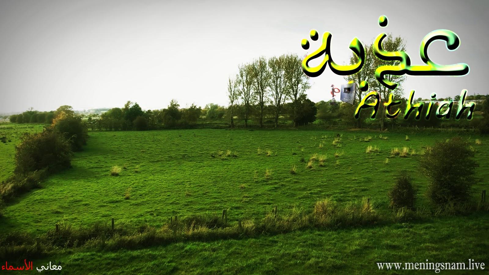 معنى اسم عذية وصفات حاملة هذا الإسم Athiah معاني الأسماء ومعاني الكلمات وتفسير القرآن الكريم