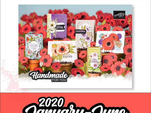 Exciting times at Stampin Up the new Mini Catalogue has gone live!