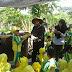 Berkebun Pepaya Dorong Anak Cintai Alam