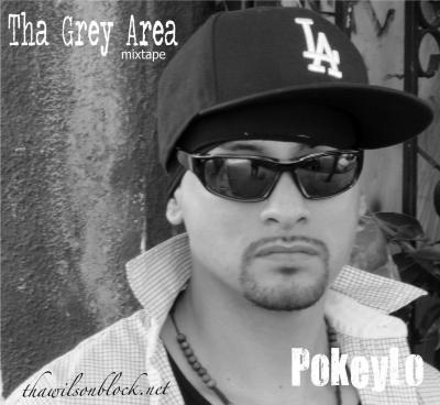 Listen/Download Tha Grey Area mixtape by PokeyLo (2013)