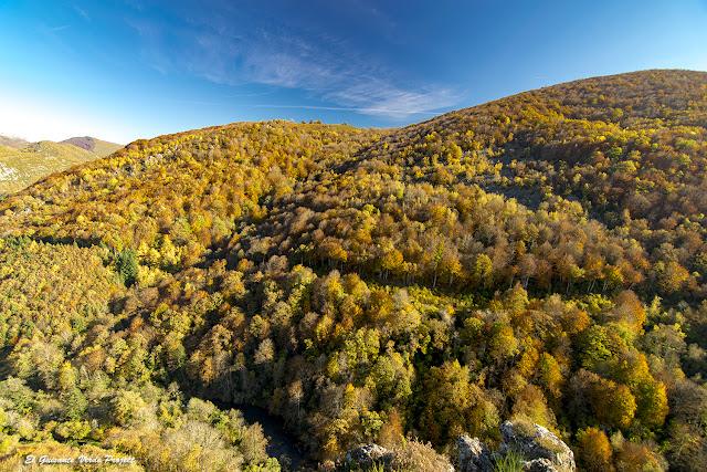 Otoño en Robledal de Betelu - Navarra por El Guisante Verde Project